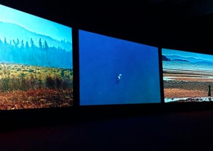 John Akomfrah, Vertigo Sea (2015), via Art Observed