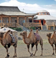 LIVE BID! Discover the Magic of Mongolia on a 7-Night Adventure for 2