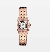 Take Home a Stunning Santos Demoiselle Cartier Diamond Watch