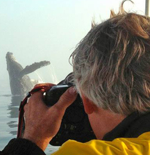 Explore Monterey Bay With Photographer Jay Ireland