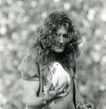 Robert Plant with Dove from 1973 San Francisco Concert, Signed Limited Edition Photo by Celebrated Rock Photographer Neal Preston