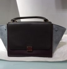 Take Home Celine Womens Handbag