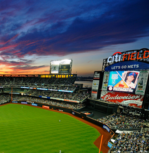 Mets Luxury Suite for 16 During a 2014 Regular Game & a Ron Darling Baseball