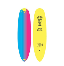 LIVE BID! One-of-a-Kind Breckin Meyer Paddle Board Designed and Signed Breckin Meyer