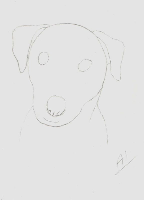 20120506-dog-shape