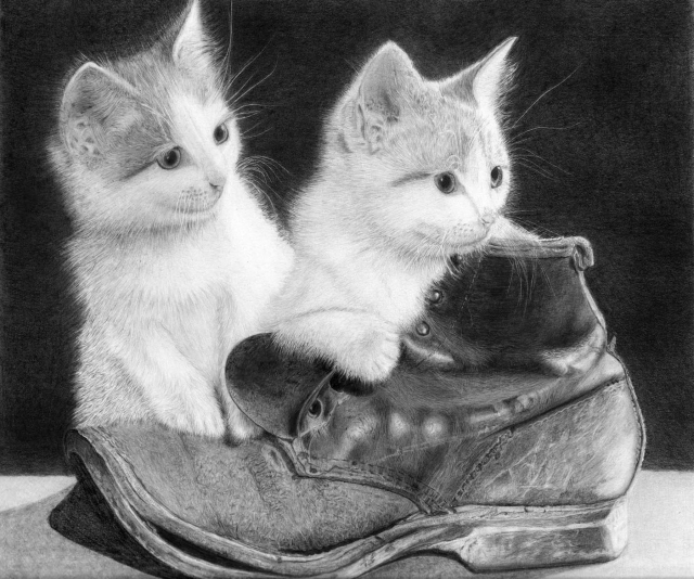 kittens in a boot