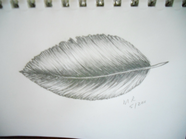 simple feather