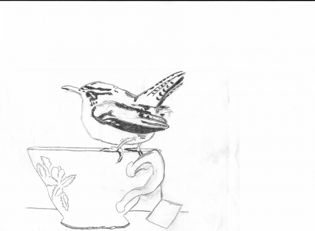 bird-and-cup1