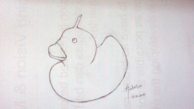 shape of duck