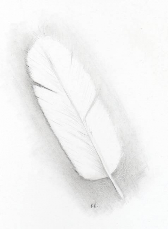 exercise-1-week-1-white-feather