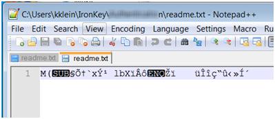 IronKey Secure Backup Encrypted file screenshot