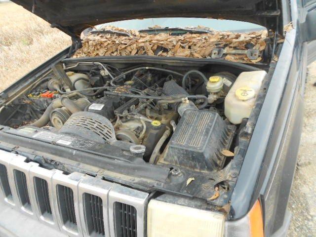 front bumper assembly 96 97 98 jeep grand cherokee laredo r174927 ebay. Black Bedroom Furniture Sets. Home Design Ideas