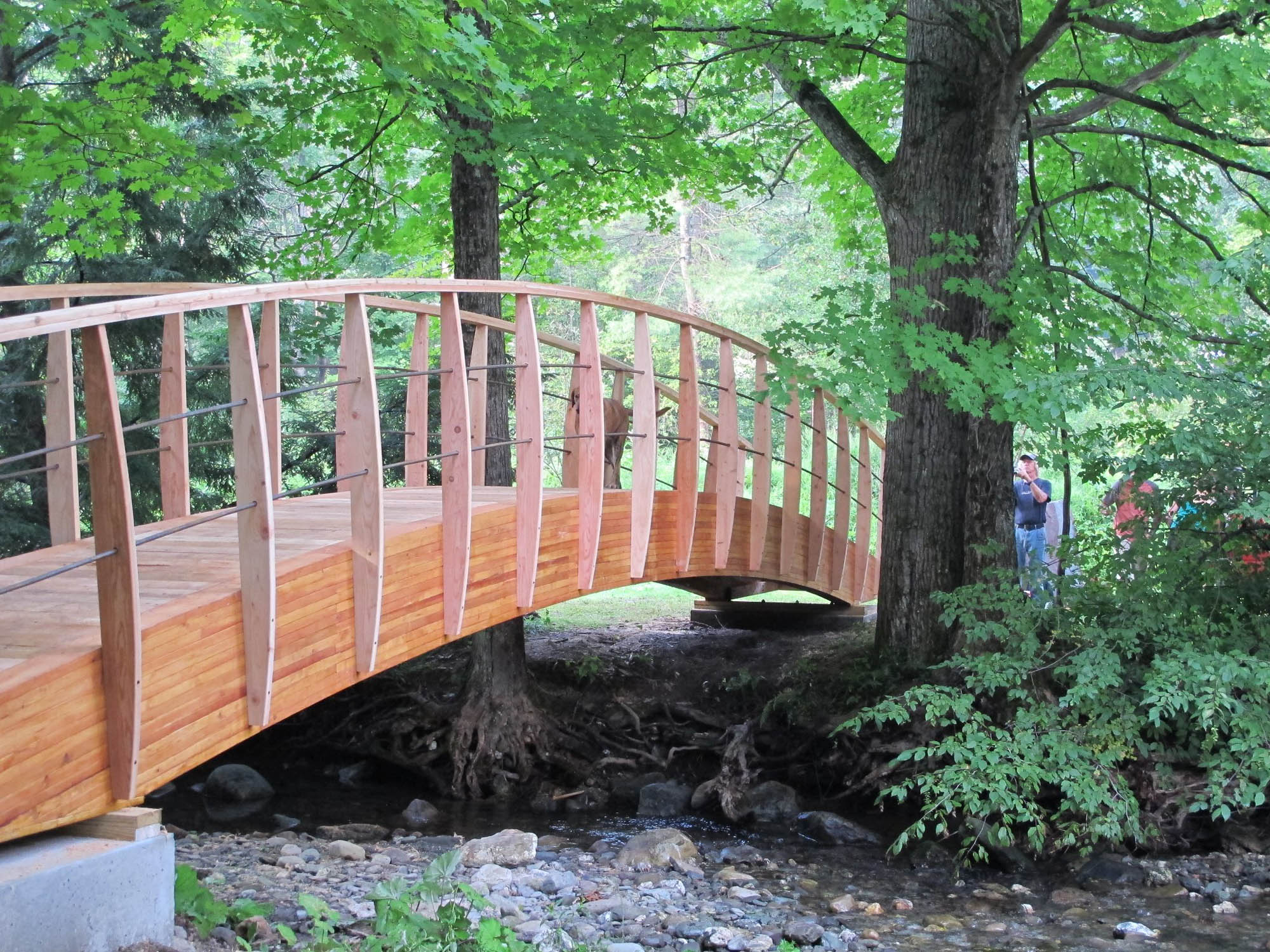 Custom Arched Bridge