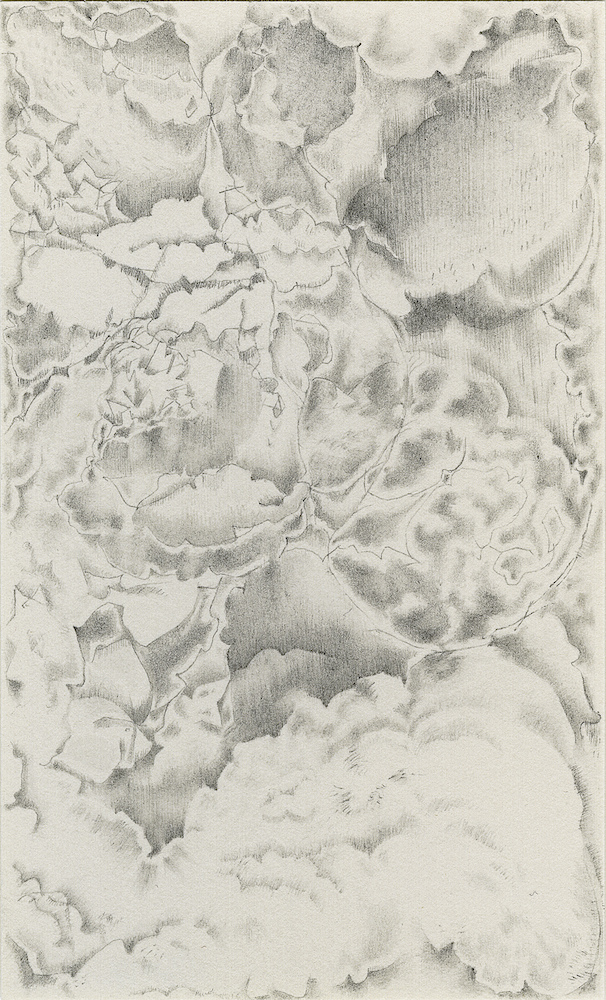 After the Disaster: Drawings Inverted Clouds