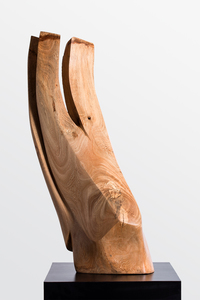 DAVID ERDMAN Available Works banyan wood