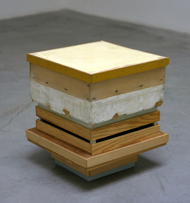 David McDonald 2000-2010 Hydrocal, Wood, Acrylic, Joint Compound, Varnish