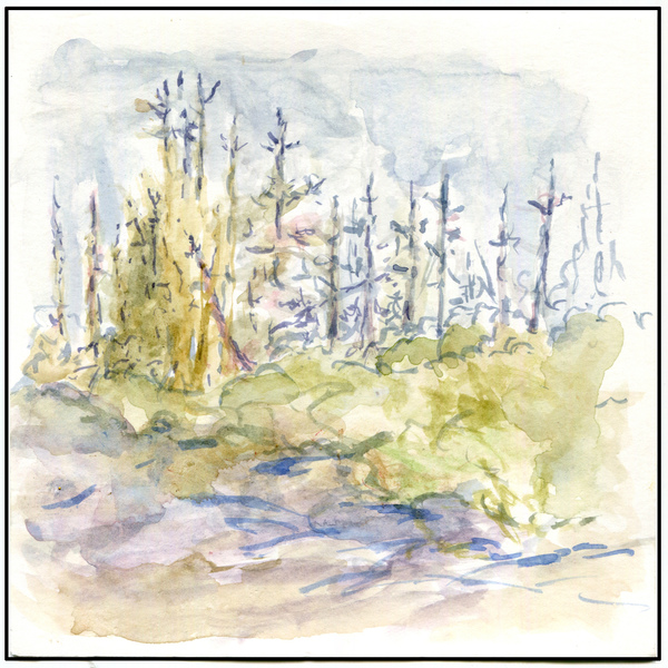 Debbie Schmitt Watercolors watercolor