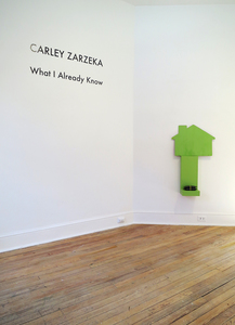 ejecta projects WHAT I ALREADY KNOW: Carley Zarzeka