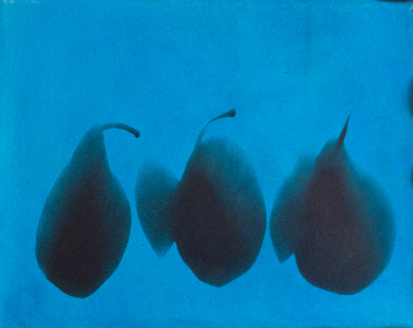 ENNID BERGER Tulips and Other Botanicals oil paint on silver gelatin photogram mounted on canvas