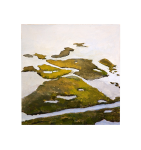 Meghan Fleming Wetland Paintings  Gouache on Paper