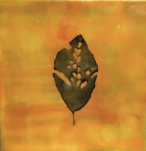 Meg Tweedy Studio Nature encaustic and paper