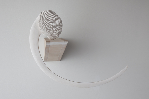 Priscilla Fusco Works Stoneware, wood