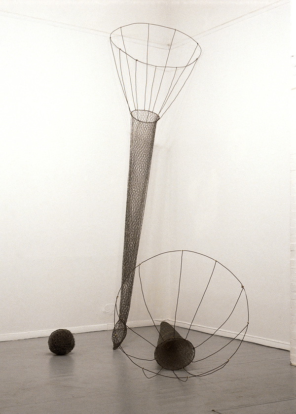Pam J. Brown Sculpture wire, chicken wire, brazing rod.