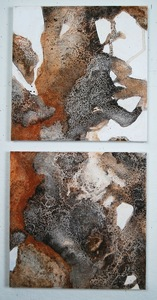 Patty Stone Recent Work salt, acrylic, shell on canvas