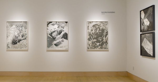 2016 Solo Exhibition at Robert Koch Gallery