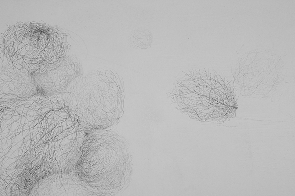 Shona Macdonald Around New Mexico pencil on paper