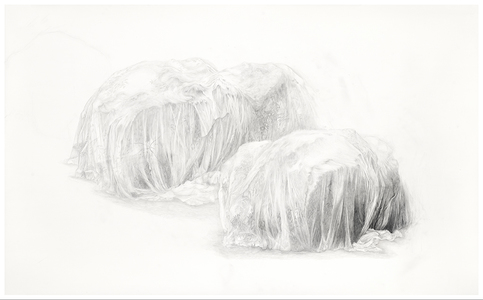 Shona Macdonald Ghosts graphite and silverpoint on terraskin