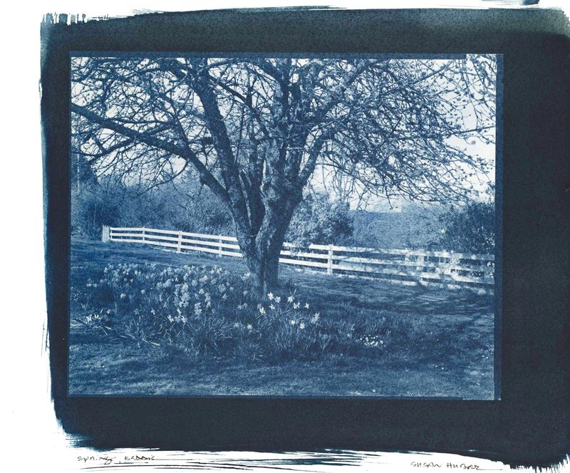 SUSAN HUBER My Land, My Home Cyanotype