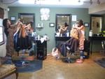 Shear Color in Lockport, NY, photo #5