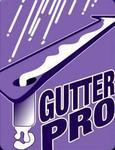 Gutter Pro in Vancouver, WA, photo #1