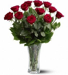 Rosesdz