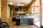 Align Chiropractic in Las Vegas, NV, photo #2