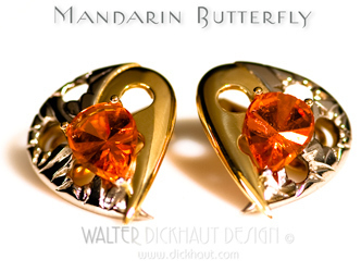 Mandarin_butterfly