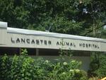 VCA Lancaster Animal Hospital in Lancaster, MA, photo #1