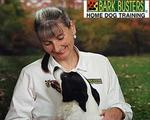Bark Busters Home Dog Training in Las Vegas, NV, photo #2