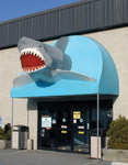 That Fish Place-That Pet Place in Lancaster, PA, photo #2