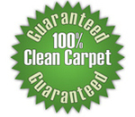 Kiwi Carpet Cleaning Services in Dallas, TX, photo #2