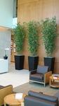 Plantscapers, Inc in Irvine, CA, photo #1