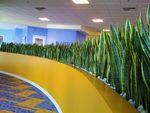 Plantscapers, Inc in Irvine, CA, photo #5