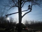 Andy's Tree Service in North Tonawanda, NY, photo #1