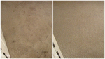 Santa Monica Carpet Cleaning in Santa Monica, CA, photo #3