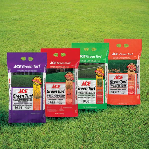 Ace_paintstore_hardwarestore_tools_garden_paint_hardware_fertilizers