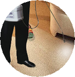 Airglide Carpet Cleaning Company in Saugus, MA, photo #1