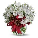 Jan's Arlington Flower delivery in Arlington, VA, photo #4