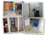 Tanin Carpet Cleaning, Water Damage & Mold Removal Chicago in Chicago, IL, photo #6