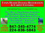 Tanin Carpet, Sofa Cleaning, Water Damage Restoration & Flooded Basement Cleanup, Mold Removal in Willowbrook, IL, photo #2